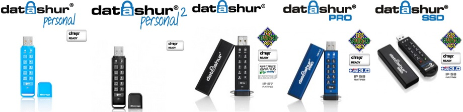 Datashur Flash Drives